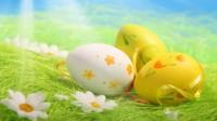 Pâques - Chasse aux oeufs