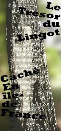 Le Trésor du Lingot - Page 2 Le-tresor-du-lingot