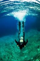 Plongee - Chasse au trésor sous-marine