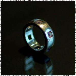 La Chasse du Conquérant 2012 - L'anneau d'Herlève