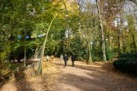 Fête des feuilles 2012 à Lyon