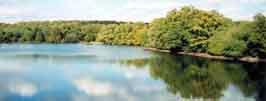 Brocéliande : jeu de piste au Lac au Duc