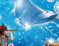 Aquarium Mare Nostrum - Chasse aux trésors