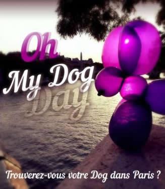 Chasse au trésor à Paris : Oh my dog day