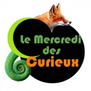 Le Mercredi des Curieux - Blagnac - Odyssud