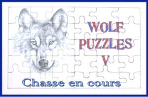 Wolf Puzzles V, la chasse au trésor