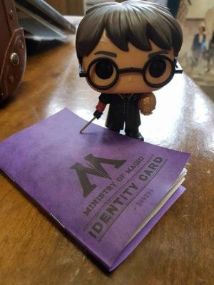 Trouver Harry Potter - L'Armoire Geek