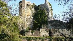 Le trésor du Château de Roquemaure (30) dans le Gard - Dominique Jongbloed