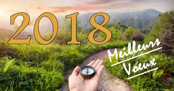 Voeux 2018 - Bonne année