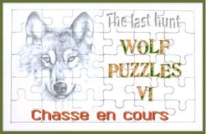 Wolf Puzzles VI, la chasse au trésor