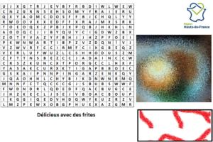 Les saveurs de France : Hauts de France