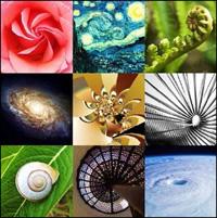La spirale du temps - Chasses au trésor géantes